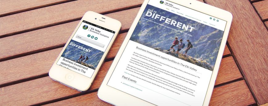 EVEI Company Website